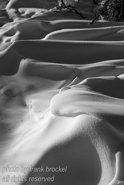 Snowscapes, shadows & light