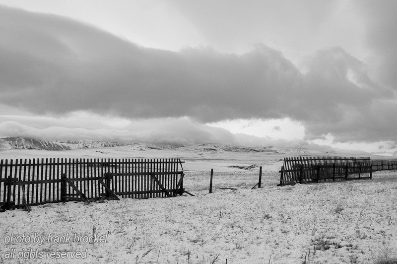 Snow fences along the southern end of the Longview Road in Alberta