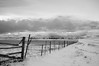 A fence line along the southern end of the Longview Road in Alberta
