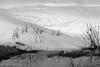 Snowdrifts and melt water