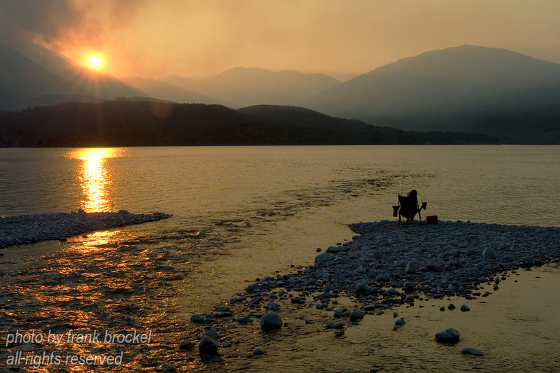 Fishing while the forests are burning