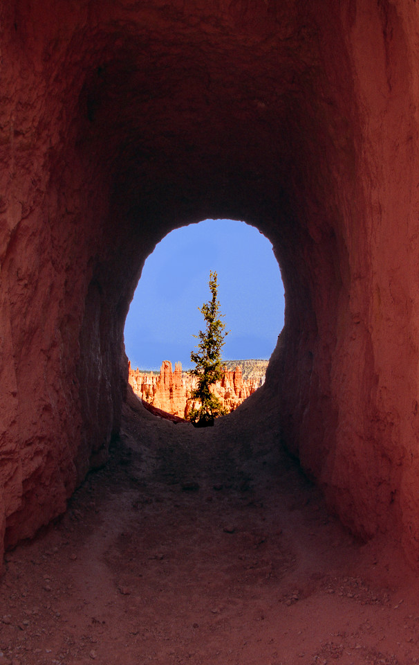 Through a tunnel in the trail descending into Bryce Canyon.  Bryce Canyon NP, UT<br /> <br /> © Kirk Sagers