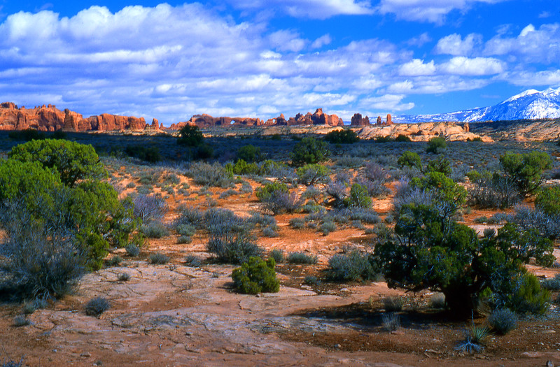 Sandstone spires and arches, and the La-Sal mountains rise out of the desert.  Arches NP, UT<br /> <br /> © Kirk Sagers