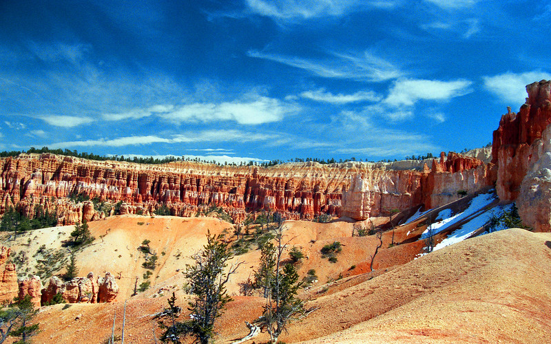Descending into Bryce Canyon in spring. Bryce Canyon NP, UT<br /> <br /> © Kirk Sagers