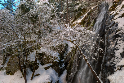 © Joseph W. Dougherty. All rights reserved.  Waterfall in winter, with trees crusted in snow; Sierra Nevada range; El Dorado County, CA.