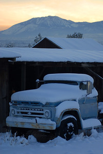 Old truck under snow, on farm near Reno, Nevada.