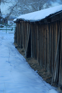 © Joseph Dougherty. All rights reserved.   Old barn with failing sides under snow.