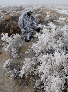© Joseph Dougherty.  All rights reserved.   Winter stalking in high desert landscape with ice-covered crystalline vegetation from freezing fog condensed onto every surface.