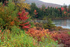 Autumn in White Mountains National Forest, New Hampshire