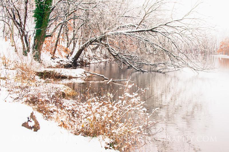 Lake Roland 3