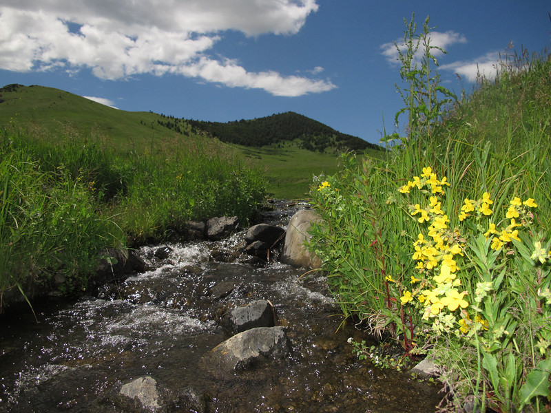 Highwood, Montana