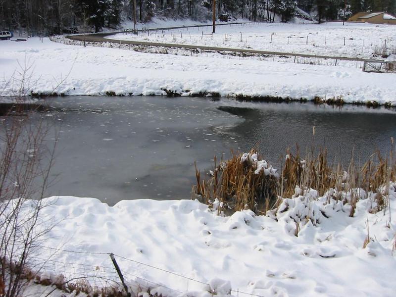 23-FrozenPond