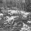 The Jones Falls