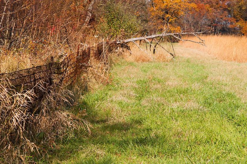 Jasper Pulaski Wildlife Refuge