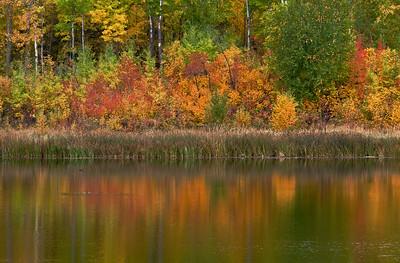 Islet Lake, in the Aspen Parkland of Beaver Hills, Alberta.