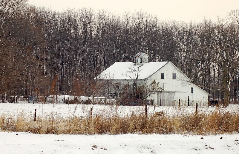 White Barn in the snow