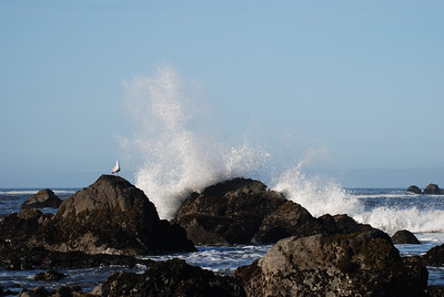 Crescent City California, near Battery Point Lighthouse