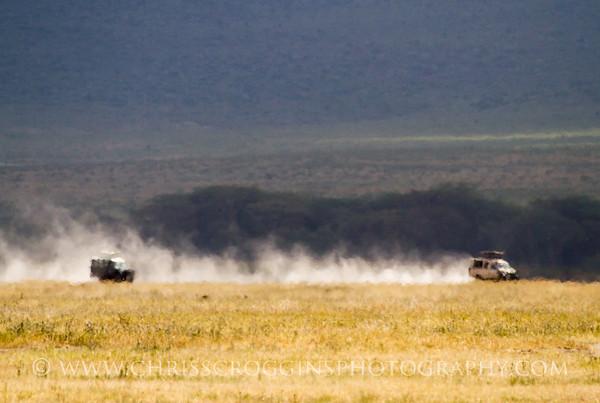 Safari Dust