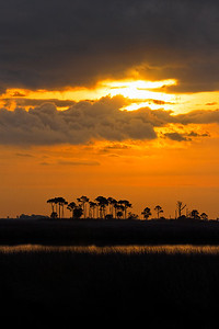 Clearing Storm and Sunrise - St. Marks NWR, Florida