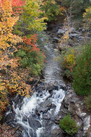 Duck Brook Acadia 2