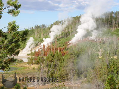 Yellowstone Geothermal Mountainside