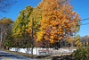 Fall scene pics 001