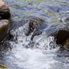 Lake Manyara Stream
