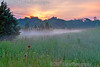 Misty dawn.Songbird Slough Forest Preserve Itasca, Il