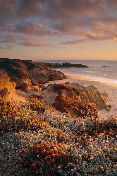 Evening Light<br /> Big Sur, California