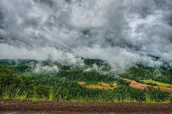 Oregon Gorge Hillside During Rain  Squall