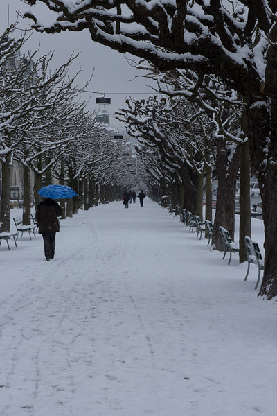 Switzerland, Lucerne, Blue Umbrella on Snowy Path SNM