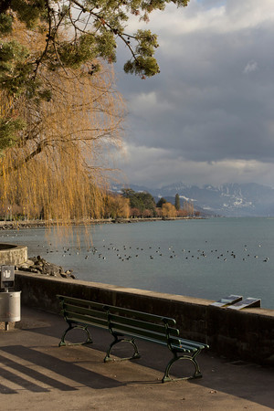 Switzerland, Lausanne, Bench, Trees and Lake SNM