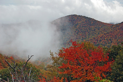 Taken in North Carolina, Blue Ridge Parkway, Mt Pisgah area.