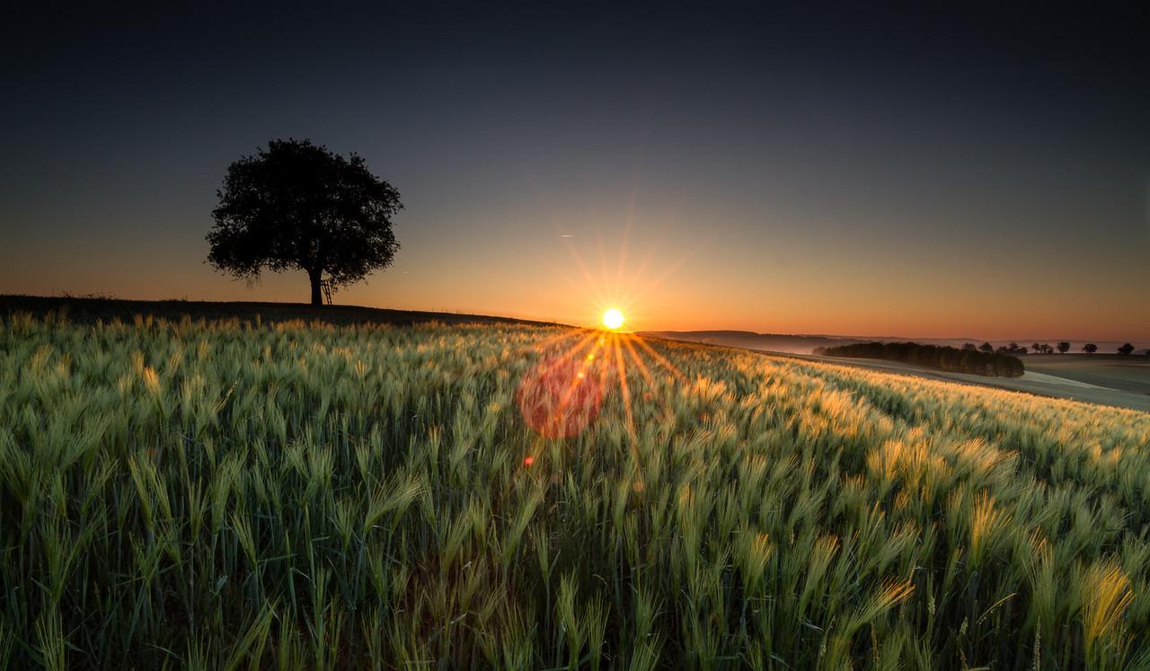 Sonnenaufgang im Kraichgau