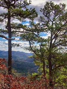 On top of Round Mountain, Ouachita Mountains, Arkansas