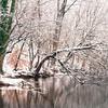 Lake Roland 1