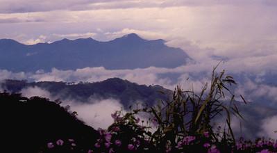 Costa Rica     714