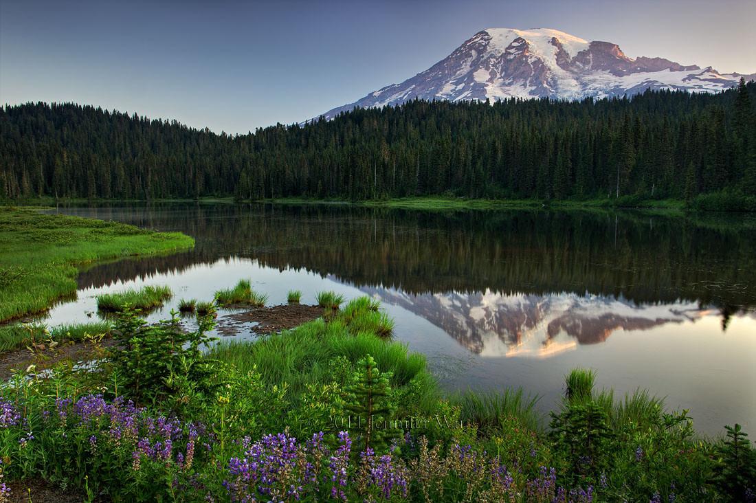 MountRaininer_Relection<br /> <br /> Mount Rainier National Park, Washington