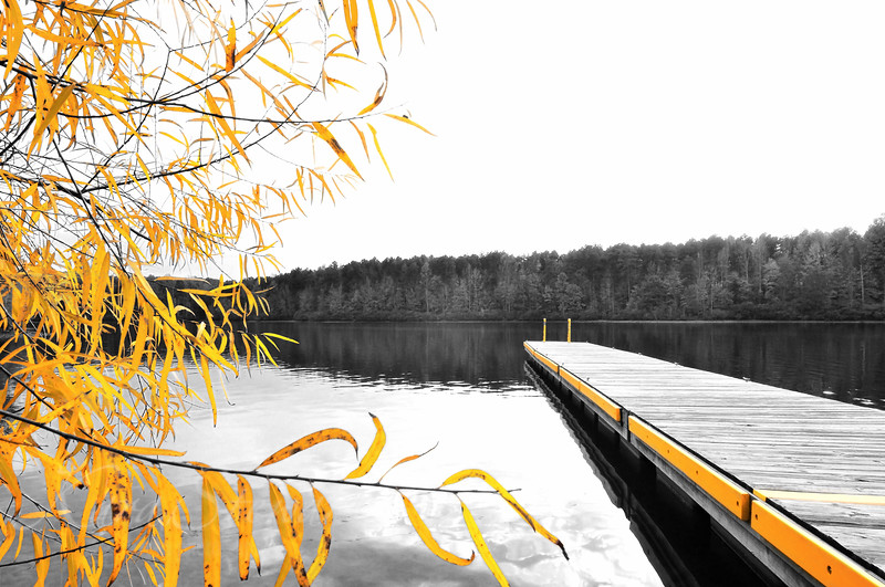 Mayo Lake Boat Dock Selective Color