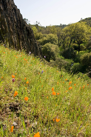 Table Mtn, Oroville