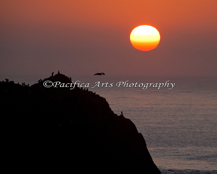 Sunset near Sutro Bath.  As the sun goes through the haze on the horizon, it turns different colors.