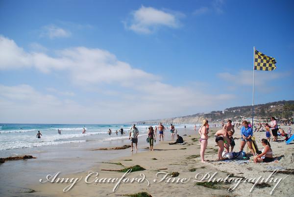 California Dream'n