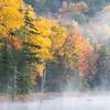 Mist over Fly Pond