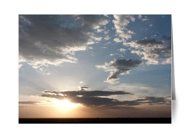 Big Sky Serengeti