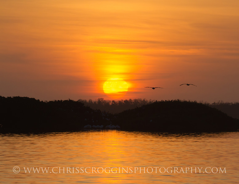 Tarpon Bay Sunset 2