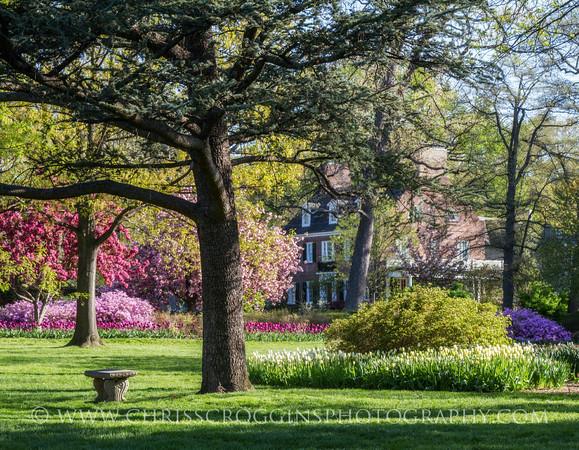Sherwood Gardens 10