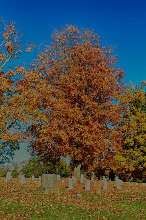 2014 Fall Foliage-2