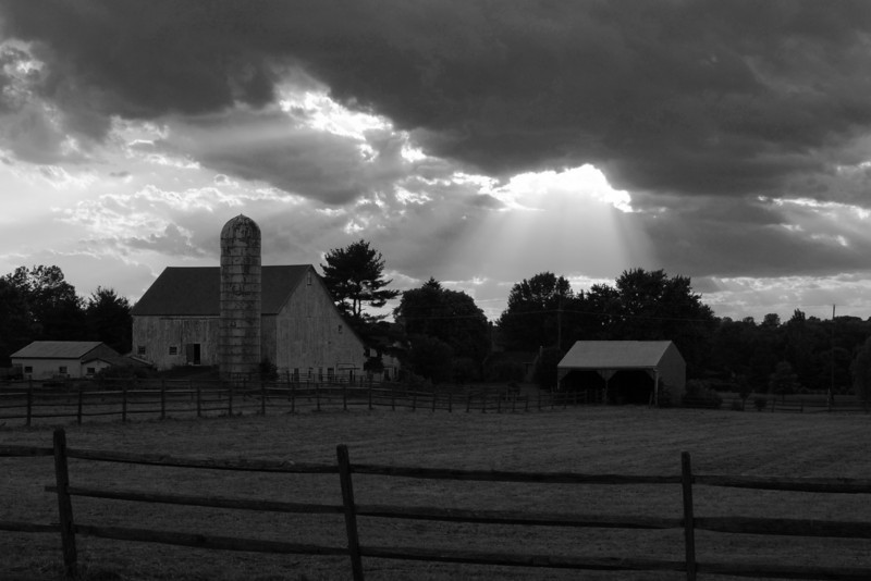 Farm Rays