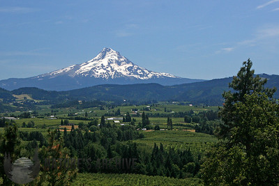 Mount Hood, south of Hood River, OR