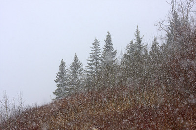 The Sound of Snowflakes